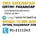 1717341628musa