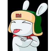 Mi Bunny #22